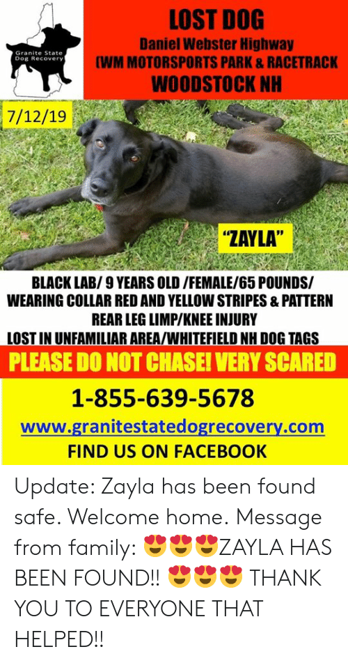 """knee injury: LOST DOG  Daniel Webster Highway  (WM MOTORSPORTS PARK&RACETRACK  Granite State  Dog Recovery  WOODSTOCK NH  7/12/19  """"ZAYLA""""  BLACK LAB/9 YEARS OLD/FEMALE/65 POUNDS/  WEARING COLLAR RED AND YELLOW STRIPES &PATTERN  REAR LEG LIMP/KNEE INJURY  LOST IN UNFAMILIAR AREA/WHITEFIELD NH DOG TAGS  PLEASE DO NOT CHASE! VERY SCARED  1-855-639-5678  www.granitestatedogrecovery.com  FIND US ON FACEBOOK Update: Zayla has been found safe. Welcome home. Message from family: 😍😍😍ZAYLA HAS BEEN FOUND!! 😍😍😍 THANK YOU TO EVERYONE THAT HELPED!!"""