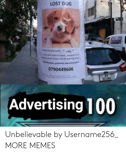"""grammar: LOST DOG  He goes by the name""""  f you can't read his name , because it's an  Arabic name! Contact me for learning Arabic:  ronunciation, grammar and conversation  Pr  0790449606  32388  Advertising 100 Unbelievable by Username256_ MORE MEMES"""