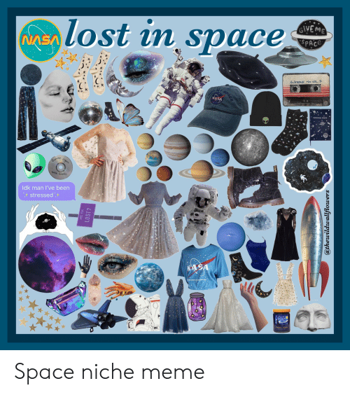 Give Me Space: lost in space  GIVE ME  SPACE  NASA  AWESOME MIx VOL. 2  NASA  PERSONAL SPACE  nights  Summer  with fuends  Idk man I've been  stressedt  NASA  TARRY NIGHT  ...  ARE YOU  LOST?  SPACE  @thewildwallflowers Space niche meme