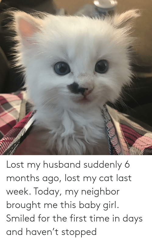 suddenly: Lost my husband suddenly 6 months ago, lost my cat last week. Today, my neighbor brought me this baby girl. Smiled for the first time in days and haven't stopped