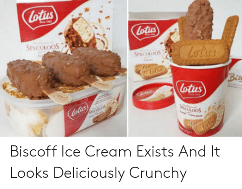 Lotus: lotus  Lotius  SPECULOOS  SPECULOOS  Bis  otius Biscoff Ice Cream Exists And It Looks Deliciously Crunchy