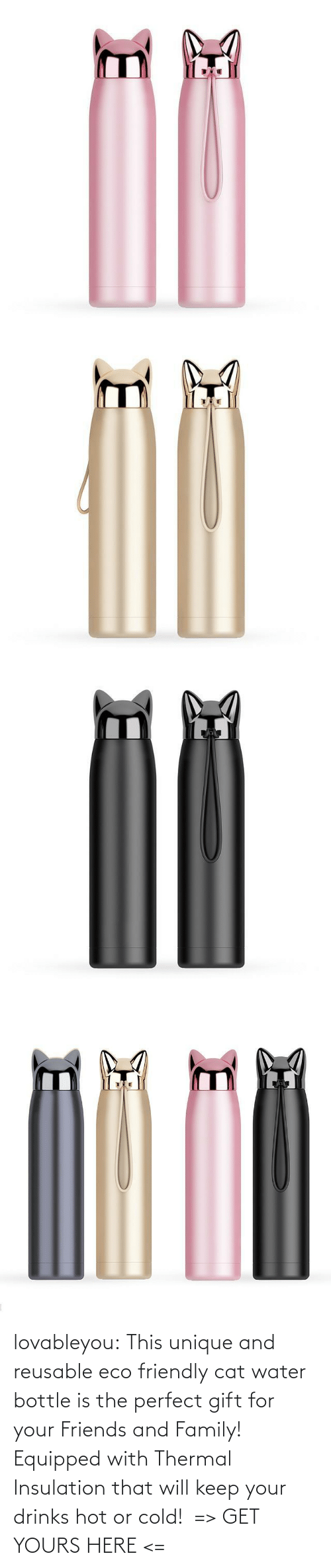Drinks: lovableyou: This unique and reusable eco friendly cat water bottle is the perfect gift for your Friends and Family! Equipped with Thermal Insulation that will keep your drinks hot or cold!  => GET YOURS HERE <=