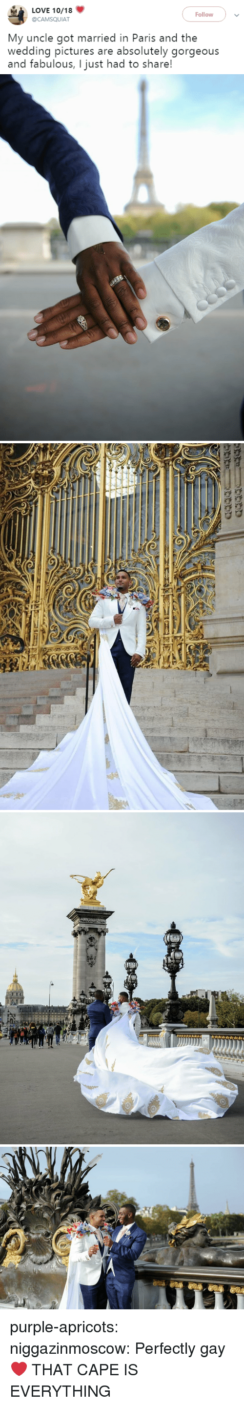 Love, Tumblr, and Blog: LOVE 10/18  Follow  @CAMSQUIAT  My uncle got married in Paris and the  wedding pictures are absolutely gorgeous  and fabulous, I just had to share! purple-apricots:  niggazinmoscow: Perfectly gay❤️  THAT CAPE IS EVERYTHING