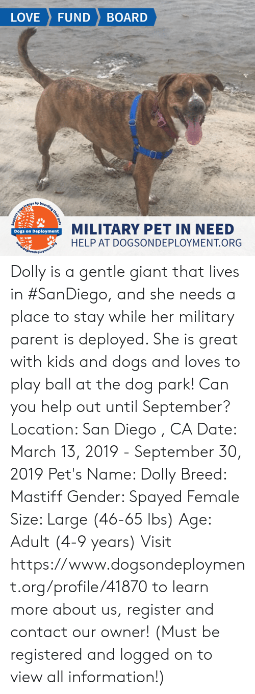 Dogs, Love, and Memes: LOVE FUND BOARD  ps by b  MILITARY PET IN NEED  HELP AT DOGSONDEPLOYMENT.ORG  Dogs on Deployment Dolly is a gentle giant that lives in #SanDiego, and she needs a place to stay while her military parent is deployed. She is great with kids and dogs and loves to play ball at the dog park! Can you help out until September?   Location: San Diego , CA Date: March 13, 2019 - September 30, 2019  Pet's Name: Dolly Breed: Mastiff Gender: Spayed Female Size: Large (46-65 lbs) Age: Adult (4-9 years)  Visit https://www.dogsondeployment.org/profile/41870 to learn more about us, register and contact our owner! (Must be registered and logged on to view all information!)
