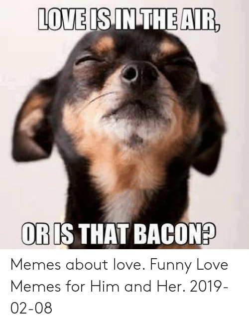 Funny, Love, and Memes: LOVE  IS INTHEAR  ORIS THAT BACON? Memes about love. Funny Love Memes for Him and Her. 2019-02-08
