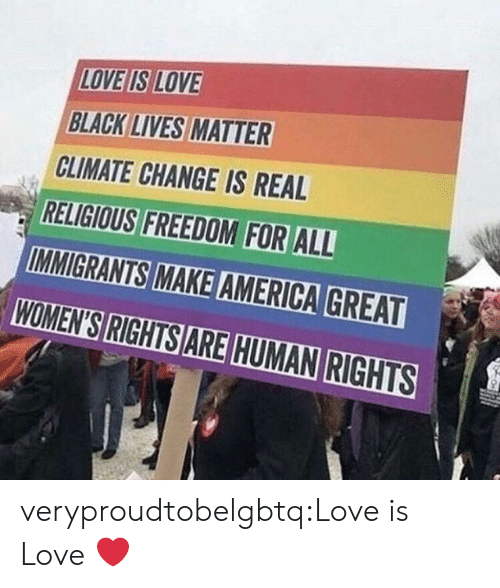 Lives Matter: LOVE IS LOVE  BLACK LIVES MATTER  CLIMATE CHANGE IS REAL  RELIGIOUS FREEDOM FOR ALL  WOMEN'S RIGHTS ARE HUMAN RIGHTS veryproudtobelgbtq:Love is Love ❤️