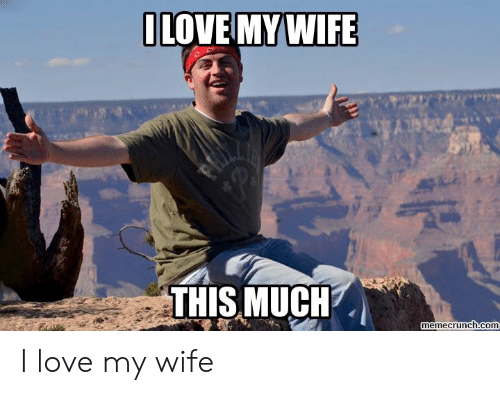 Love Wife Meme: LOVE MYWIFE  THIS MUCH  memecrunch.com I love my wife