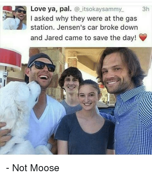 Cars, Love, and Memes: Love ya, pal  itsokaysammy. 3h  I asked why they were at the gas  station. Jensen's car broke down  and Jared came to save the day! - Not Moose