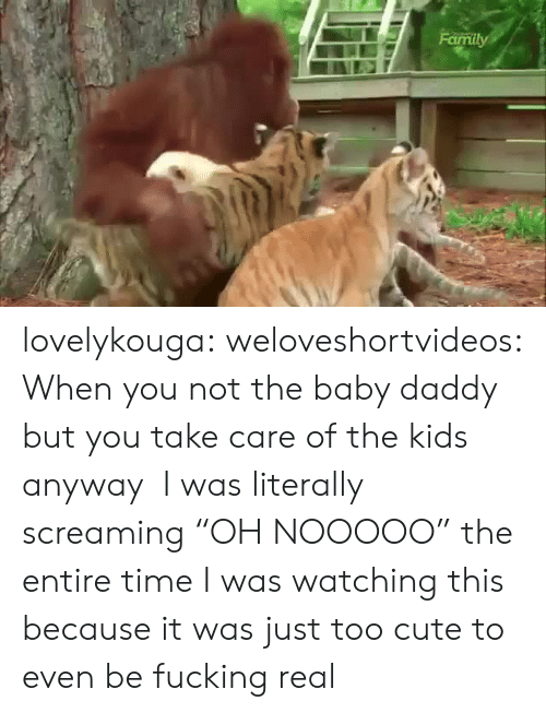 "Baby Daddy, Cute, and Fucking: lovelykouga: weloveshortvideos:  When you not the baby daddy but you take care of the kids anyway    I was literally screaming ""OH NOOOOO"" the entire time I was watching this because it was just too cute to even be fucking real"