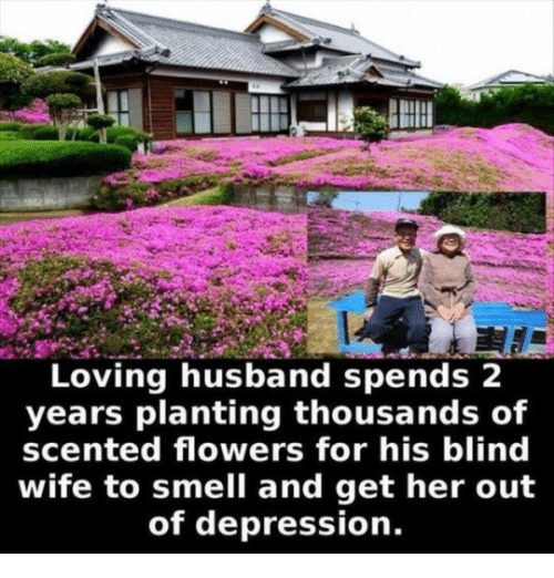 Smell, Depression, and Flowers: Loving husband spends 2  years planting thousands of  scented flowers for his blind  wife to smell and get her out  of depression.