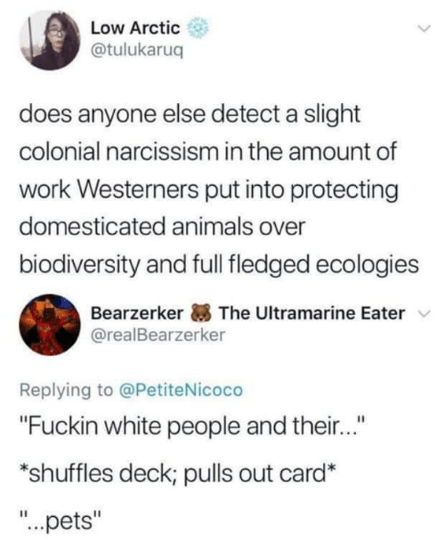 "domesticated: Low Arctic  @tulukaruq  does anyone else detect a slight  colonial narcissism in the amount of  work Westerners put into protecting  domesticated animals over  biodiversity and full fledged ecologies  Bearzerker The Ultramarine Eater  @realBearzerker  Replying to @PetiteNicoco  ""Fuckin white people and their...""  *shuffles deck; pulls out card*  ""...pets"""