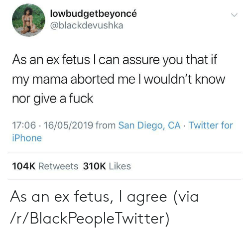 Blackpeopletwitter, Iphone, and Twitter: lowbudgetbeyoncé  @blackdevushka  As an ex fetus I can assure you that if  my mama aborted me l wouldn't know  nor give a fuck  17:06 -16/05/2019 from San Diego, CA Twitter for  iPhone  104K Retweets 310K Likes As an ex fetus, I agree (via /r/BlackPeopleTwitter)
