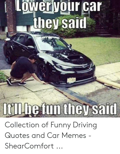 🐣 25+ Best Memes About Driving Quotes | Driving Quotes Memes