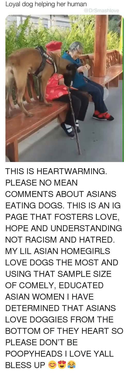 Asian, Bless Up, and Dogs: Loyal dog helping her human  @DrSmashlove THIS IS HEARTWARMING. PLEASE NO MEAN COMMENTS ABOUT ASIANS EATING DOGS. THIS IS AN IG PAGE THAT FOSTERS LOVE, HOPE AND UNDERSTANDING NOT RACISM AND HATRED. MY LIL ASIAN HOMEGIRLS LOVE DOGS THE MOST AND USING THAT SAMPLE SIZE OF COMELY, EDUCATED ASIAN WOMEN I HAVE DETERMINED THAT ASIANS LOVE DOGGIES FROM THE BOTTOM OF THEY HEART SO PLEASE DON'T BE POOPYHEADS I LOVE YALL BLESS UP 😊😍😂