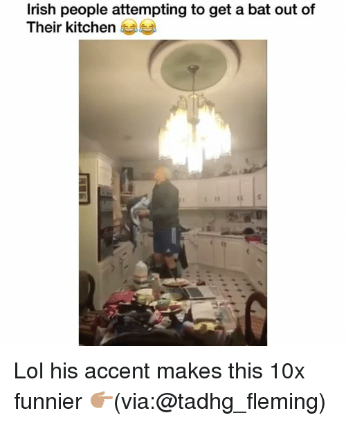 batting: lrish people attempting to get a bat out of  Their kitchen Lol his accent makes this 10x funnier 👉🏽(via:@tadhg_fleming)