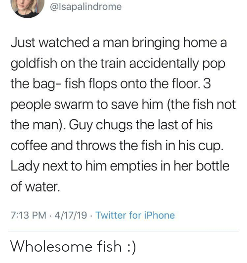 3 People: @lsapalindrome  Just watched a man bringing home a  goldfish on the train accidentally pop  the bag- fish flops onto the floor. 3  people swarm to save him (the fish not  the man). Guy chugs the last of his  coffee and throws the fish in his cup.  Lady next to him empties in her bottle  of water.  7:13 PM 4/17/19 Twitter for iPhone Wholesome fish :)