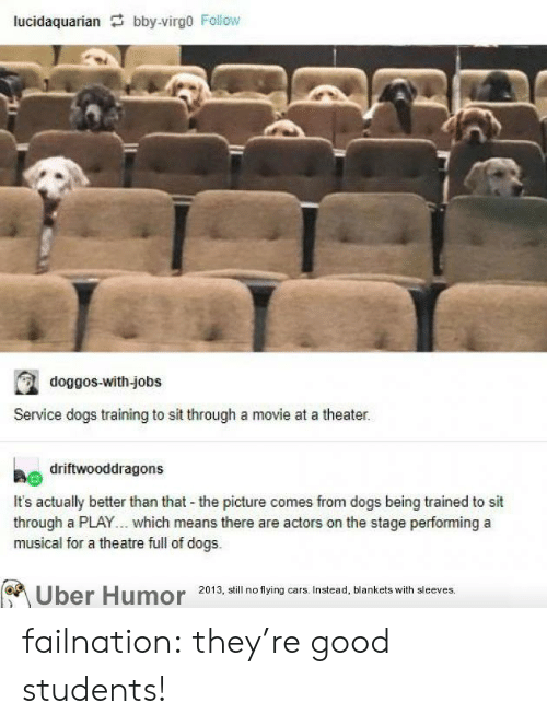 better than that: lucidaquarian bby-virgo Follow  doggos-with-jobs  Service dogs training to sit through a movie at a theater.  driftwooddragons  It's actually better than that the picture comes from dogs being trained to sit  through a PLAY... which means there are actors on the stage performing a  musical for a theatre full of dogs.  Uber Humor 2013, still no flying cars. Instead, blankets with sleeves. failnation:  they're good students!