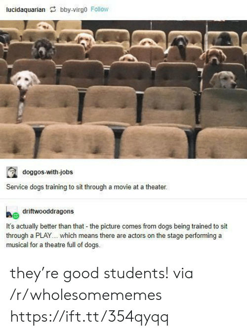 better than that: lucidaquarian bby-virgo Follow  doggos-with-jobs  Service dogs training to sit through a movie at a theater.  driftwooddragons  It's actually better than that - the picture comes from dogs being trained to sit  through a PLAY... which means there are actors on the stage performing a  musical for a theatre full of dogs. they're good students! via /r/wholesomememes https://ift.tt/354qyqq