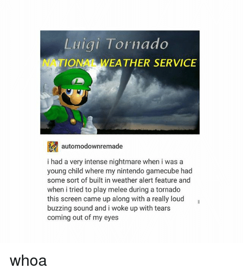 gamecube: Luiai Tornado  NATIONAL WEA THER SERVICE  E automodownremade  i had a very intense nightmare when i was a  young child where my nintendo gamecube had  some sort of built in weather alert feature and  when i tried to play melee during a tornado  this screen came up along with a really loud  buzzing sound and i woke up with tears  coming out of my eyes whoa