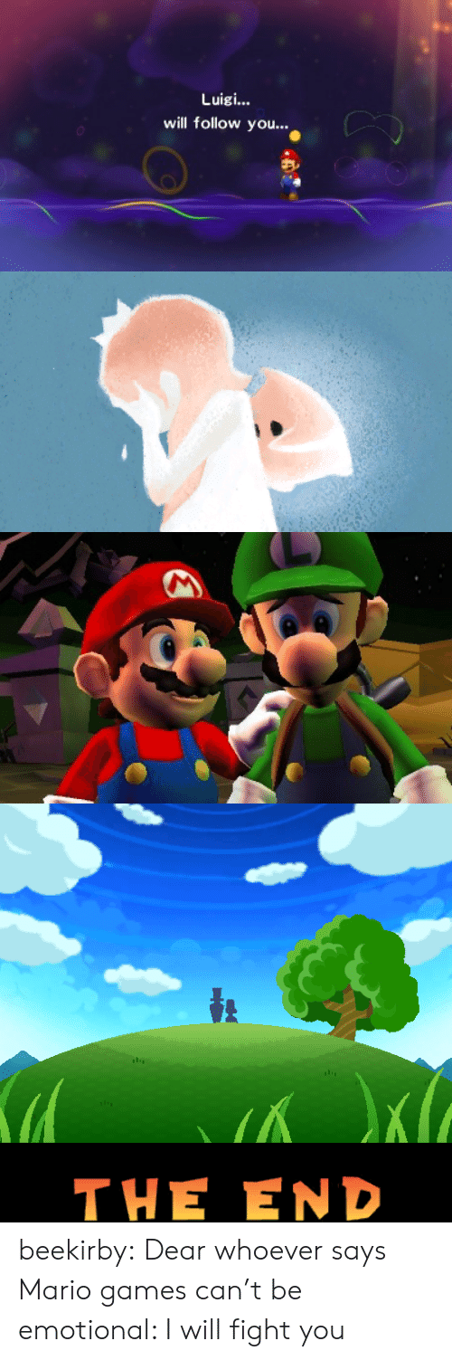 Will Fight: Luigi...  will follow you..   Кa  THE END beekirby:  Dear whoever says Mario games can't be emotional: I will fight you