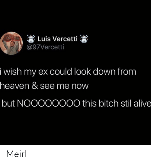 Alive, Heaven, and MeIRL: * Luis Vercetti  @97Vercetti  i wish my ex could look down from  heaven & see me now  but NOO000000 this bitch stil alive Meirl
