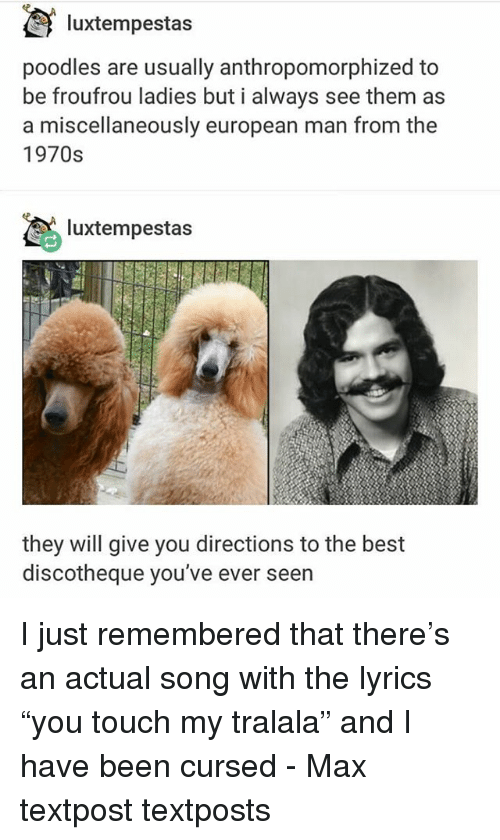 "Textposts: luxtempestas  poodles are usually anthropomorphized to  be froufrou ladies but i always see them as  a miscellaneously european man from the  1970s  luxtempestas  they will give you directions to the best  discotheque you've ever seern I just remembered that there's an actual song with the lyrics ""you touch my tralala"" and I have been cursed - Max textpost textposts"