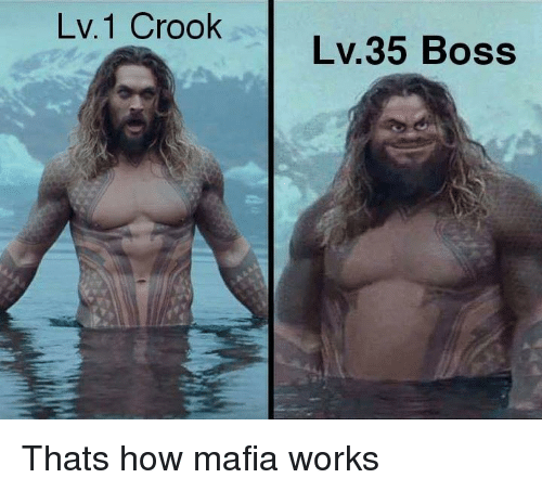 How, Mafia, and Boss: Lv.1 Crook  Lv.35 Boss Thats how mafia works