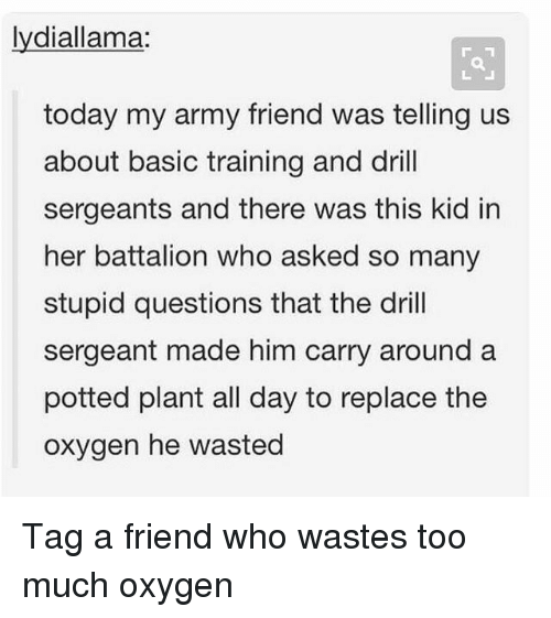 Basic Training: lydiallama:  today my army friend was telling us  about basic training and drill  sergeants and there was this kid in  her battalion who asked so many  stupid questions that the dril  sergeant made him carry around a  potted plant all day to replace the  oxygen he wasted Tag a friend who wastes too much oxygen