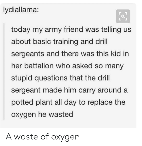 Basic Training: lydiallama:  today my army friend was telling us  about basic training and drill  sergeants and there was this kid in  her battalion who asked so many  stupid questions that the drill  sergeant made him carry around a  potted plant all day to replace the  oxygen he wasted A waste of oxygen