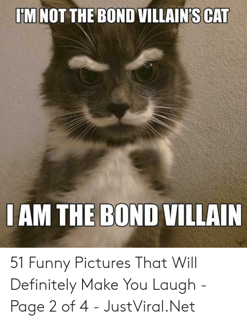 Will Definitely: M NOT THE BOND VILLAIN'S CAT  IAM THE BOND VILLAIN 51 Funny Pictures That Will Definitely Make You Laugh - Page 2 of 4 - JustViral.Net