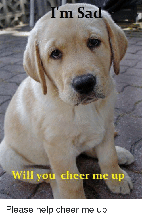 Cheers Me Up: m Sad  Will you cheer me up Please help cheer me up