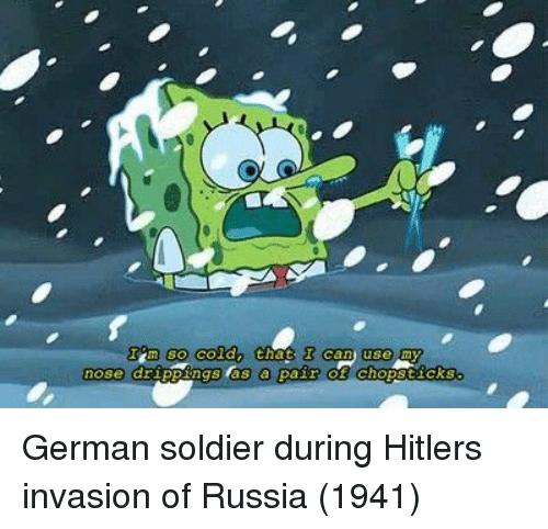 Hitler, Russia, and Can: m so coldn that  can use my  nose dr German soldier during Hitlers invasion of Russia (1941)