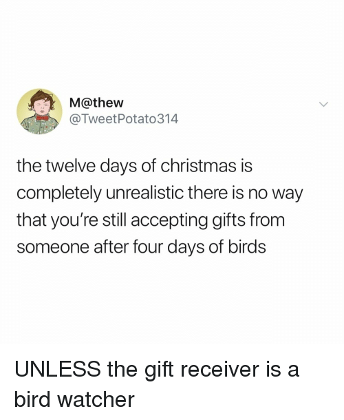 Christmas, Birds, and The Gift: M@thew  @TweetPotato314  the twelve days of christmas is  completely unrealistic there is no way  that you're still accepting gifts from  someone after four days of birds UNLESS the gift receiver is a bird watcher