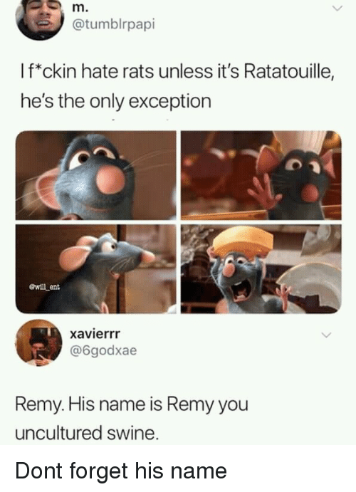 Remy: m.  @tumblrpapi  If*ckin hate rats unless it's Ratatouille,  he's the only exception  ewill ent  xavierrr  @6godxae  Remy. His name is Remy you  uncultured swine. Dont forget his name