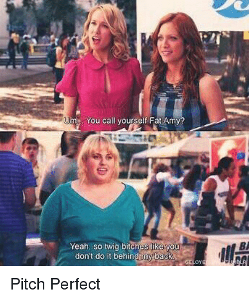 fat amy: m You call yourself Fat Amy  Yeah, so twig bitches like y  don't do it behinduny back Pitch Perfect
