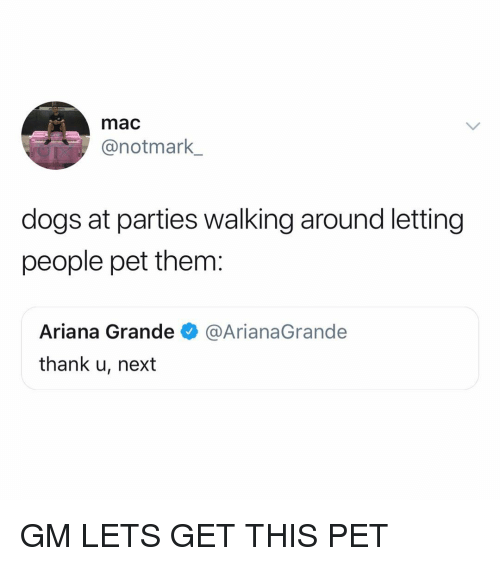 Ariana Grande, Dogs, and Memes: mac  @notmark  dogs at parties walking around letting  people pet them:  Ariana Grande@ArianaGrande  thank u, next GM LETS GET THIS PET