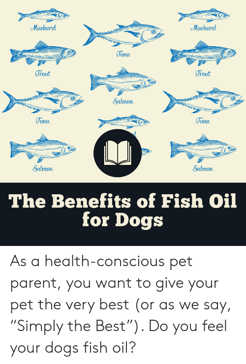 """Dogs, Memes, and Best: Mackerel  Mackerel  Tuna  oul  rout  Salmon  unu  una.  2  Salmon  Salmon  The Benefits of Fish Oil  for Dogs As a health-conscious pet parent, you want to give your pet the very best (or as we say, """"Simply the Best""""). Do you feel your dogs fish oil?"""