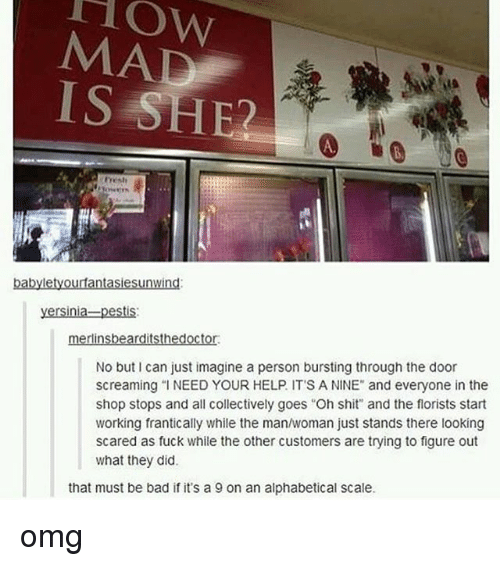 """No Buts: MAD  IS SHE  A.  Fresh  babyletyourfantasiesunwind:  yersinia-pestis:  merlinsbearditsthedoctor  No but I can just imagine a person bursting through the door  screaming """" NEED YOUR HELP. IT'S A NINE"""" and everyone in the  shop stops and all collectively goes """"Oh shit and the florists start  working frantically while the man/woman just stands there looking  scared as fuck while the other customers are trying to figure out  what they did.  that must be bad if it's a 9 on an alphabetical scale. omg"""