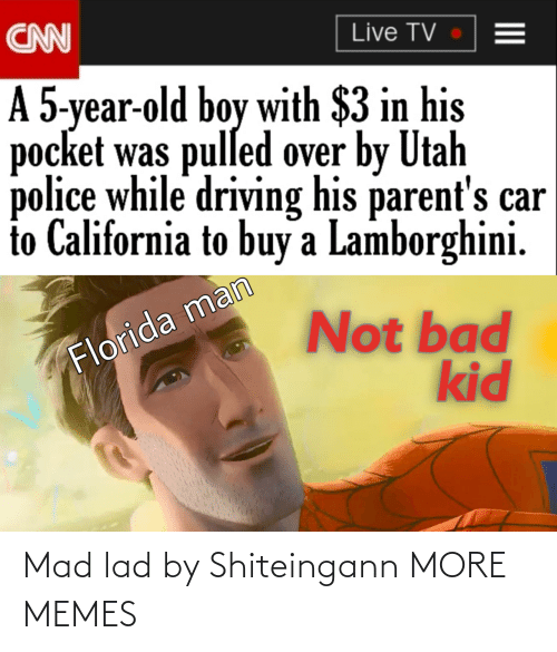 lad: Mad lad by Shiteingann MORE MEMES