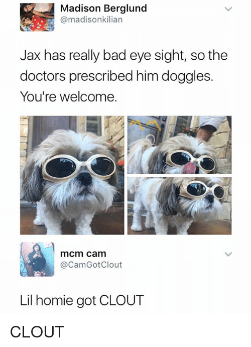 Bad, Homie, and Dank Memes: Madison Berglund  @madisonkilian  Jax has really bad eye sight, so the  doctors prescribed him doggles.  You're welcome.  mcm cam  @CamGotClout  Lil homie got CLOUT CLOUT
