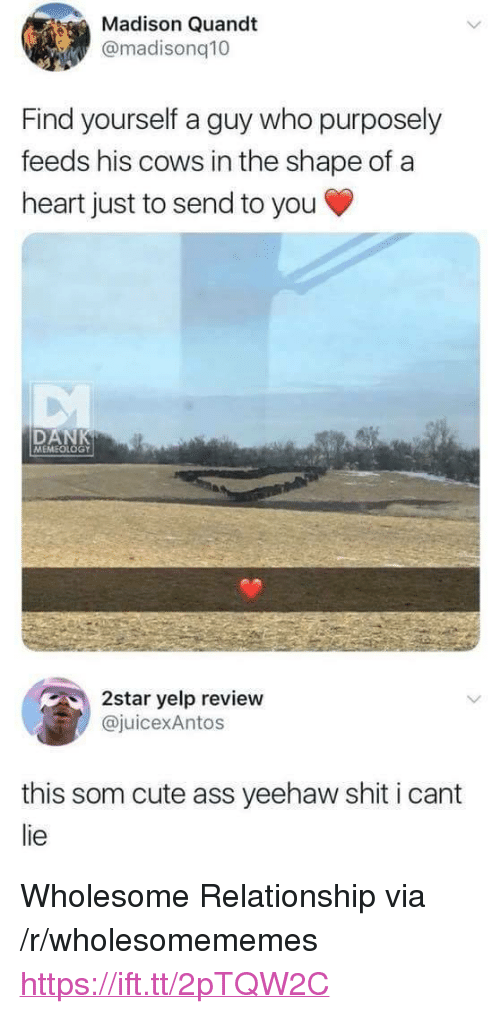 "I Cant Lie: Madison Quandt  @madisonq10  Find yourself a guy who purposely  feeds his cows in the shape of a  heart just to send to you  DAN  MEMEOLOGY  2star yelp review  juicexAntos  this som cute ass yeehaw shit i cant  lie <p>Wholesome Relationship via /r/wholesomememes <a href=""https://ift.tt/2pTQW2C"">https://ift.tt/2pTQW2C</a></p>"