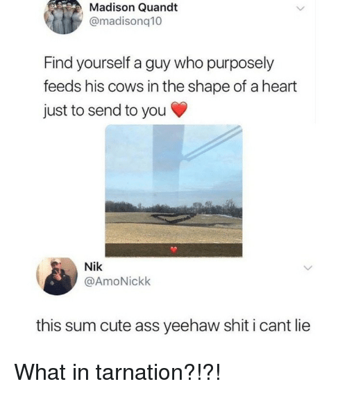 I Cant Lie: Madison Quandt  @madisonq10  Find yourself a guy who purposely  feeds his cows in the shape of a heart  just to send to you  Nik  @AmoNickk  this sum cute ass yeehaw shit i cant lie What in tarnation?!?!