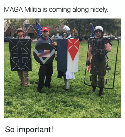 Militia: MAGA Militia is coming alongnicely  SA So important!