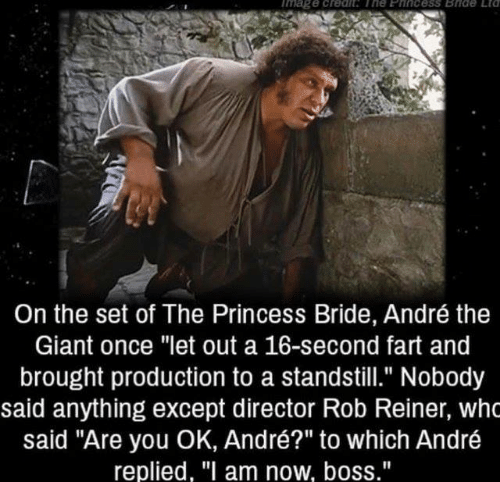 "The Princess Bride: mage creah The Eincess Bide Etd  On the set of The Princess Bride, André the  Giant once ""let out a 16-second fart and  brought production to a standstill."" Nobody  said anything except director Rob Reiner, who  said ""Are you OK, André?"" to which André  replied, ""I am now, boss."""