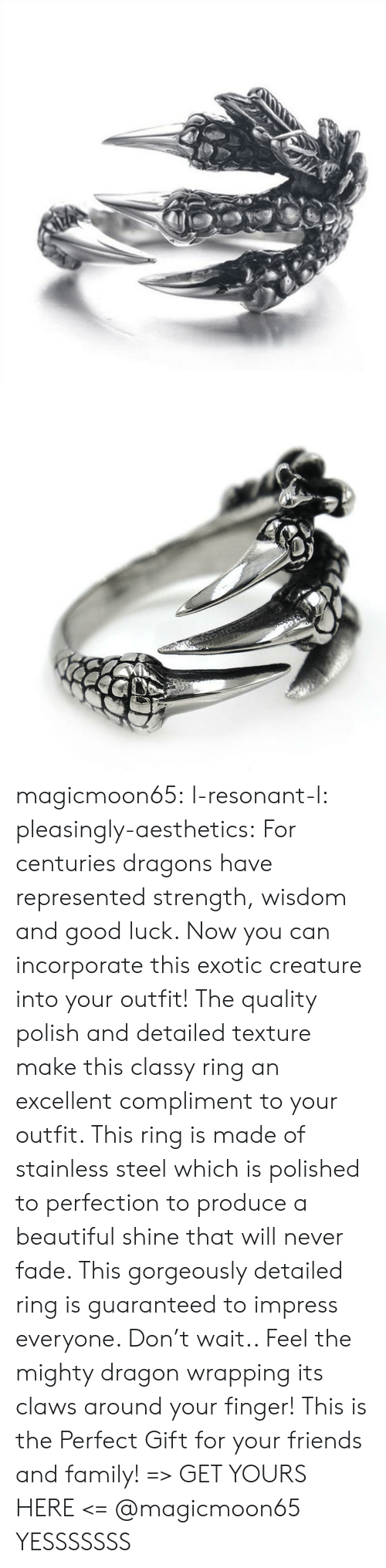 polish: magicmoon65:  l-resonant-l:  pleasingly-aesthetics: For centuries dragons have represented strength, wisdom and good luck. Now you can incorporate this exotic creature into your outfit! The quality polish and detailed texture make this classy ring an excellent compliment to your outfit. This ring is made of stainless steel which is polished to perfection to produce a beautiful shine that will never fade.  This gorgeously detailed ring is guaranteed to impress everyone. Don't wait.. Feel the mighty dragon wrapping its claws around your finger! This is the Perfect Gift for your friends and family! => GET YOURS HERE <=   @magicmoon65   YESSSSSSS