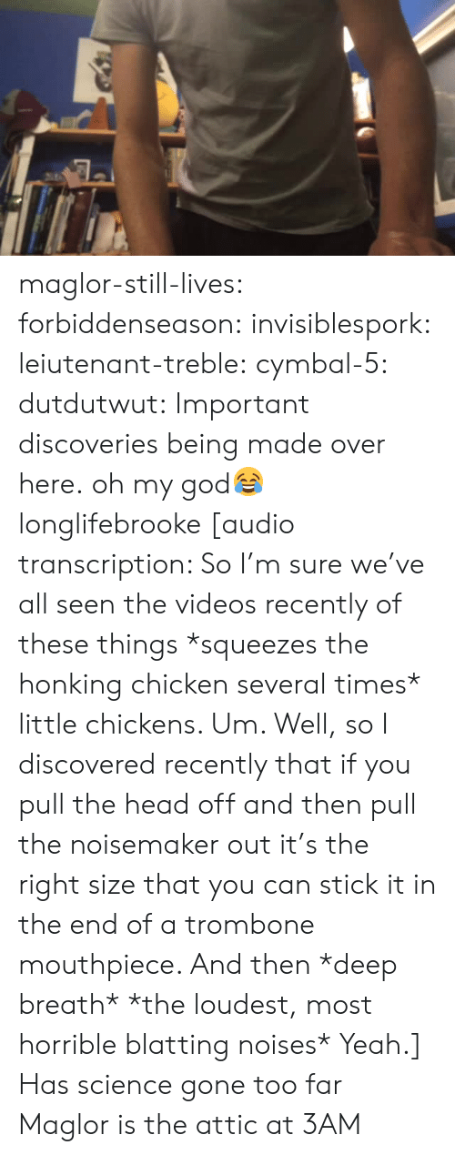 God, Head, and Oh My God: maglor-still-lives:  forbiddenseason:  invisiblespork:  leiutenant-treble:  cymbal-5:  dutdutwut:  Important discoveries being made over here.  oh my god😂  longlifebrooke  [audio transcription: So I'm sure we've all seen the videos recently of these things *squeezes the honking chicken several times* little chickens. Um. Well, so I discovered recently that if you pull the head off and then pull the noisemaker out it's the right size that you can stick it in the end of a trombone mouthpiece. And then *deep breath* *the loudest, most horrible blatting noises* Yeah.]   Has science gone too far  Maglor is the attic at 3AM