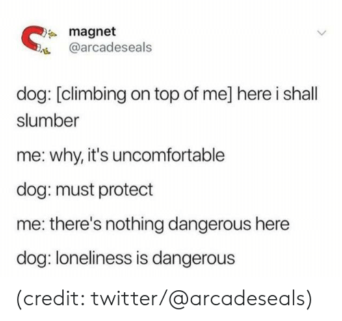 Climbing: magnet  @arcadeseals  dog: [climbing on top of me] here i shall  slumber  why, it's uncomfortable  dog: must protect  there's nothing dangerous here  dog: loneliness is dangerous (credit: twitter/@arcadeseals)