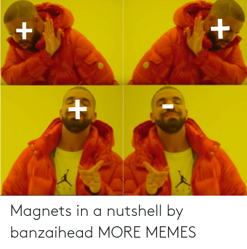 in a nutshell: Magnets in a nutshell by banzaihead MORE MEMES