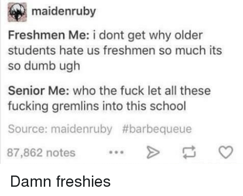 So Dumb: maidenruby  Freshmen Me: i dont get why older  students hate us freshmen so much its  so dumb ugh  Senior Me: who the fuck let all these  fucking gremlins into this school  Source: maidenruby #barbequeue  87,862 notes Damn freshies