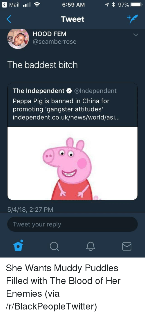Muddy: Maill  6:59 AM  Tweet  HOOD FEM  @scamberrose  The baddest bitch  The Independent @lndependent  Peppa Pig is banned in China for  promoting 'gangster attitudes'  independent.co.uk/news/world/asi...  5/4/18, 2:27 PM  Tweet your reply <p>She Wants Muddy Puddles Filled with The Blood of Her Enemies (via /r/BlackPeopleTwitter)</p>
